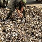 Las crónicas de Morbo: Comercio de armas ¡Esta ley es un colador!