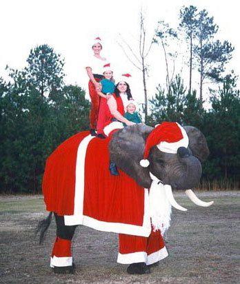 navidad x mas imagenes humor
