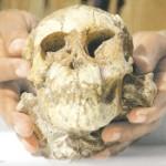 Fosil de niña de Etiopia de 3,3 millones de años