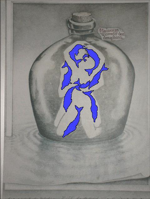 delfines-ilusion-optica-revelada