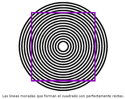 ilusion-cuadrado-circulos-redondas-lineas-optica