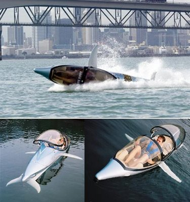 imagenes-humor-delfin-dolphin