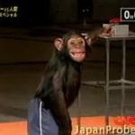 Chimpancé versus hombre