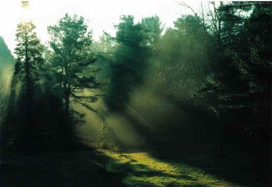 Hay luz