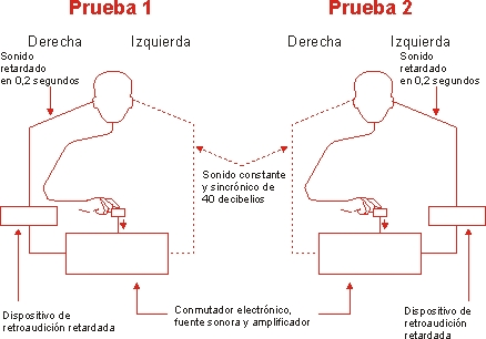 hemisferios-cerebrales-lengua-materna-9