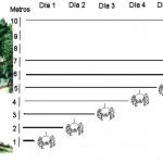 Adivina la pregunta 58: Lógica y matemáticas - La cura psicológica de la araña