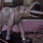 Descubren una nueva especie de elefante prehistórico con cuatro colmillos
