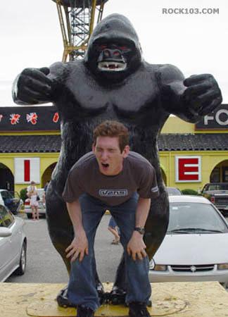 gorila-mono