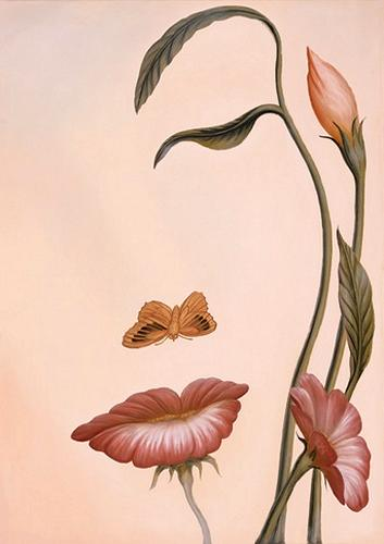 ilusiones-flor-cara