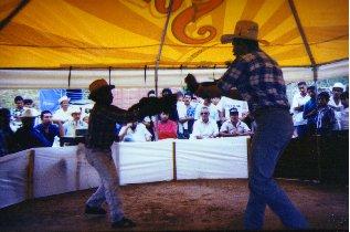 pelea-gallos-mexico