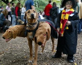 trajes-perros-cerbero