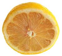 naranja-umbilicada-orange