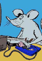 raton mouse