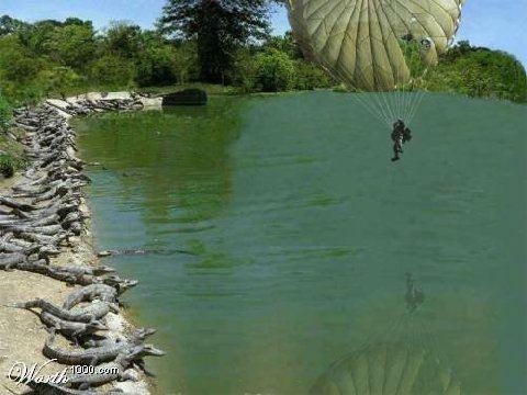sorprendente imagen paracaidas cocodrilo