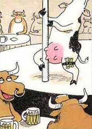 vaca sexy
