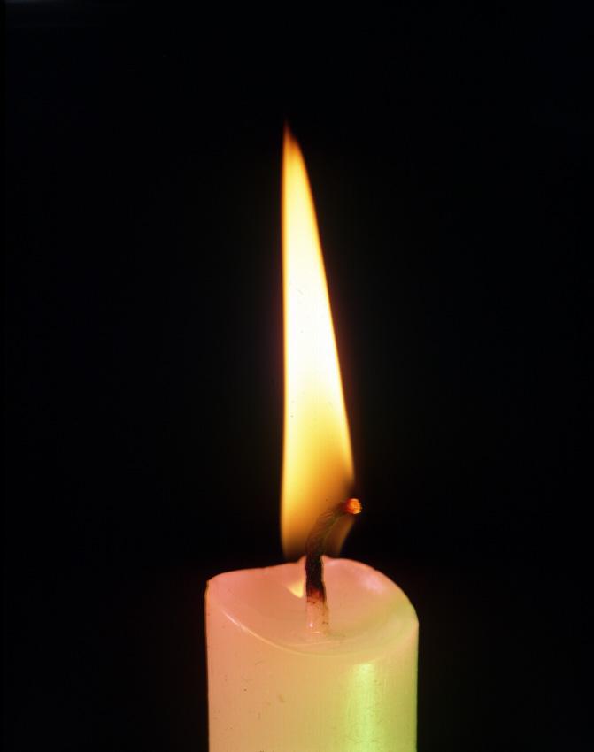 candle-flame-llama-vela