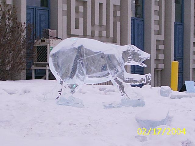 hielo escultura oso ice bear