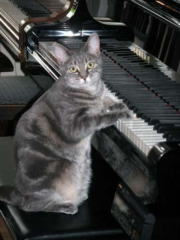 nora_piano