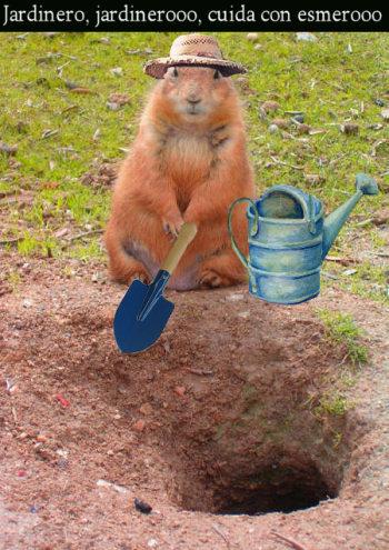perrito praderas jardinero
