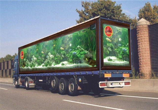 arte-camiones-05