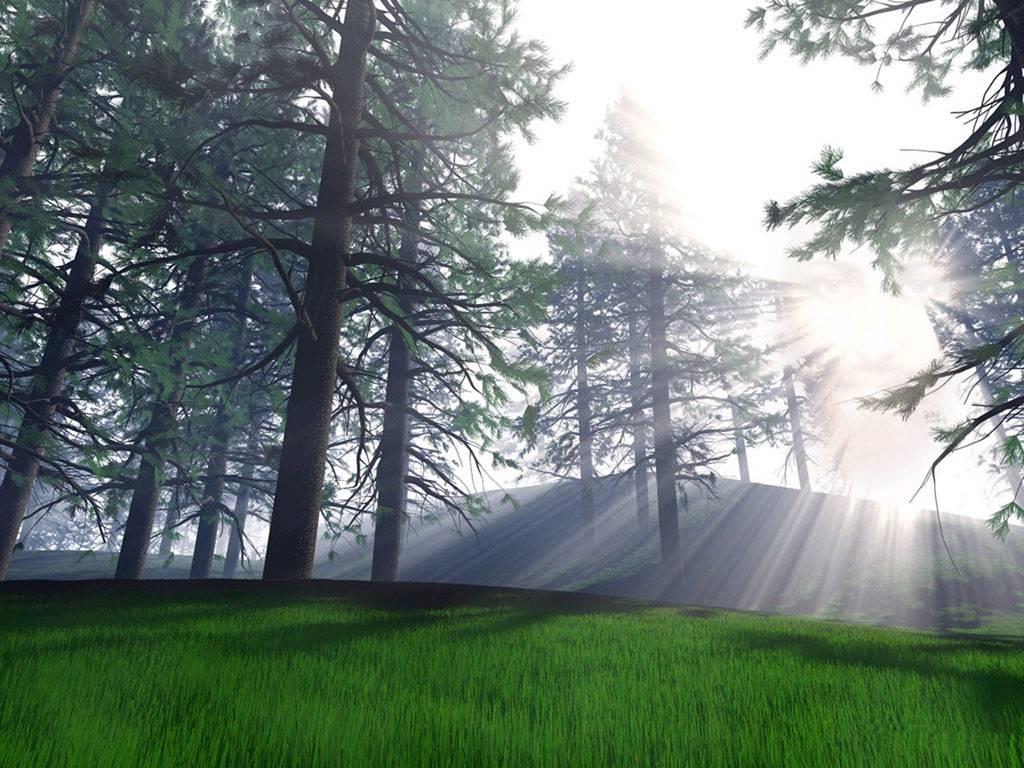 paisajes-naturaleza-05