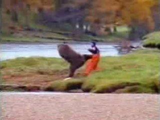 John West oso salmon anuncio