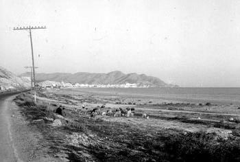 benidorm fotos Avda Armada Espanola Playa Poniente