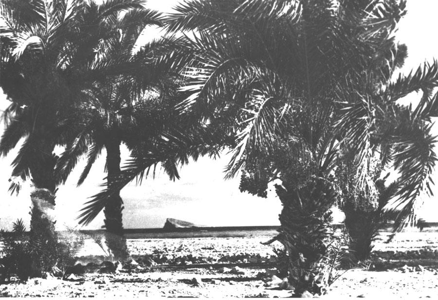 benidorm-fotos-Isla desde Poniente
