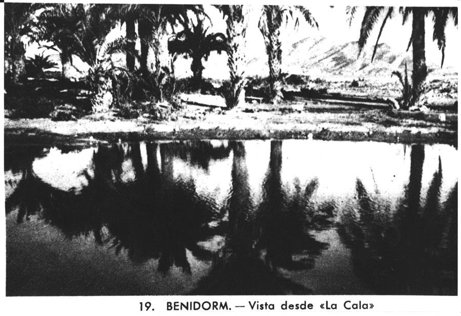 benidorm-fotos-Oasis Poniente Cala