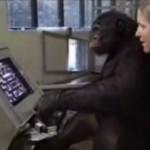 chimpance jugando pacman