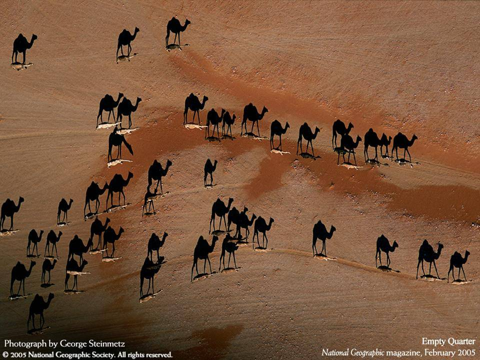 imagenes-naturaleza-national-geographic-2005-03