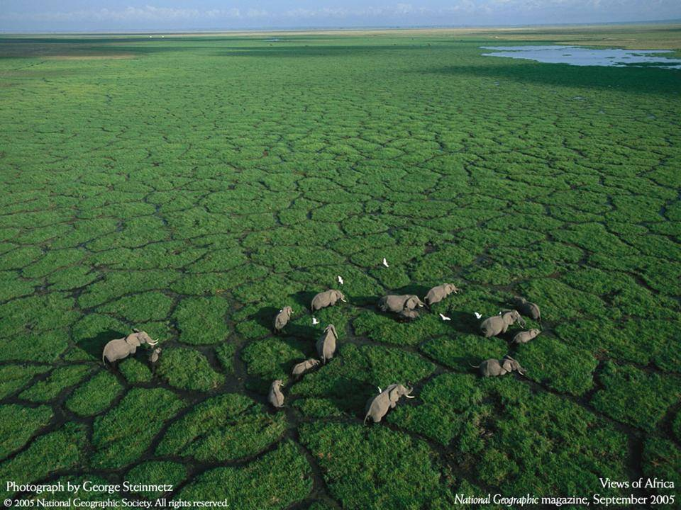 imagenes-naturaleza-national-geographic-2005-04