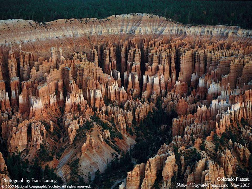 imagenes-naturaleza-national-geographic-2005-18