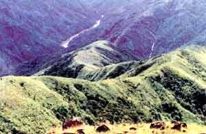 lluvia mawsynram india monte