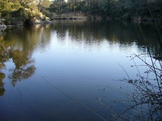 pantano lago