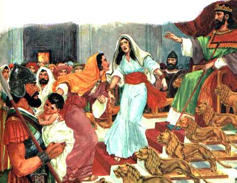 salomon-historia