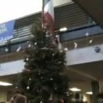 Las crónicas de Morbo: Derribando un árbol de Navidad