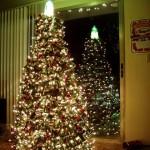 Árboles de navidad raritos