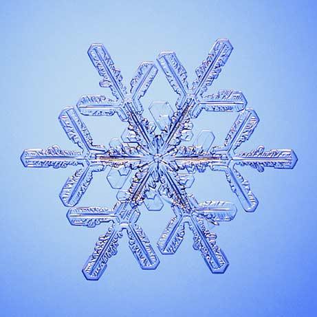 copos-de-nieve-snowflakes-snow-crystals-cristales-1