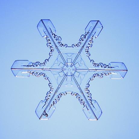 copos-de-nieve-snowflakes-snow-crystals-cristales-4