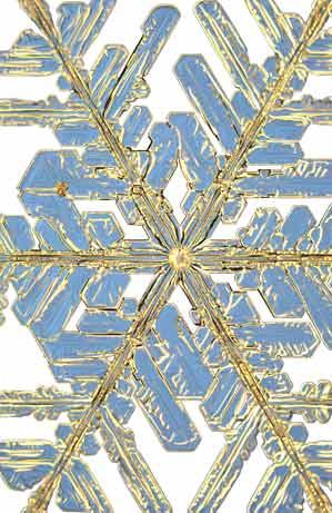 copos-de-nieve-snowflakes-snow-crystals-cristales-7