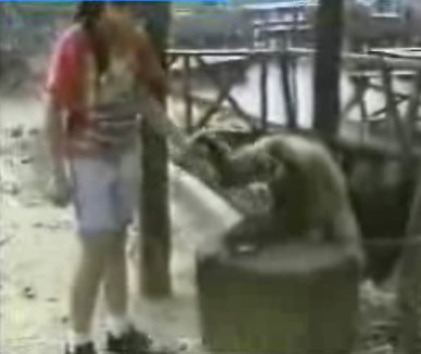 mono masajes