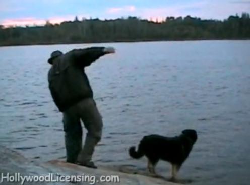 perro lago hombre puntapie