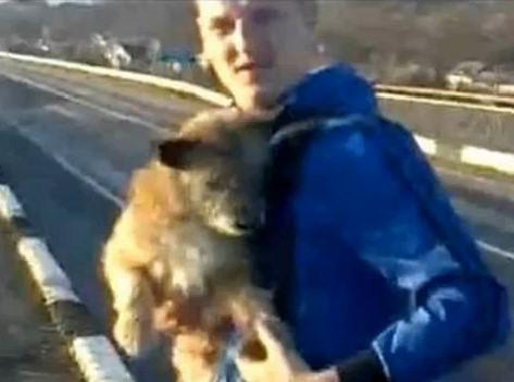 perro tirado puente Svajunas Beniukas hombre
