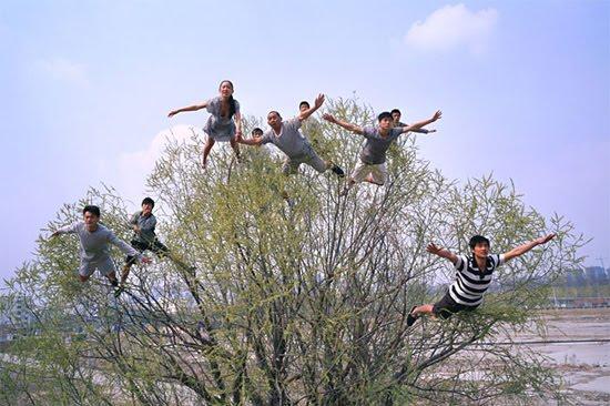 trucos fotos arbol contra gravedad
