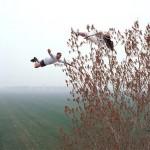 Ilusiones desafiando la gravedad