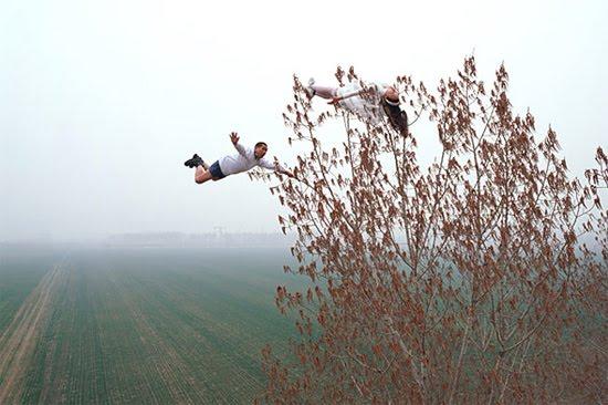 trucos fotos viento arbol