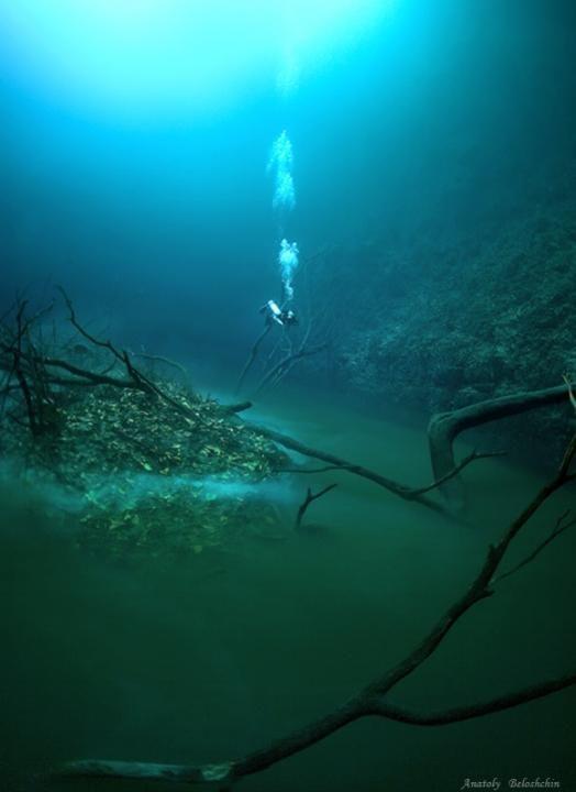 cenote-angelita-agua-acido-rio-mar
