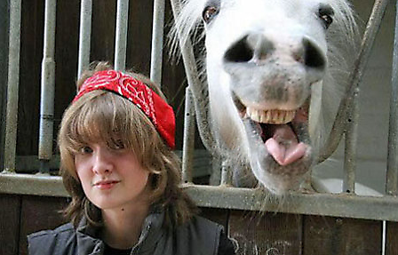 fotografias fotos humor caballo
