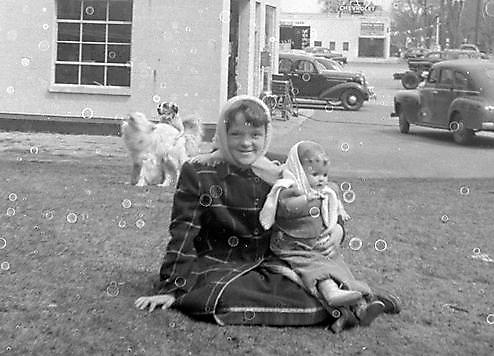 fotografias fotos humor perros